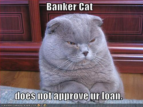 http://amyletinsky.files.wordpress.com/2008/06/funny-pictures-banker-cat.jpg